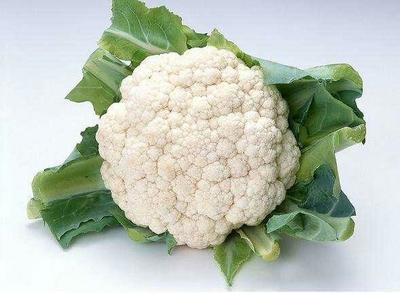 陕西省咸阳市三原县白面青梗松花菜 适中 1~2斤 乳白色