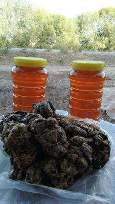 新疆维吾尔自治区喀什地区喀什市枣花蜜 塑料瓶装 100% 2年以上