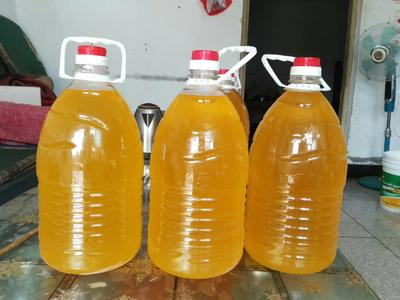 山西省运城市盐湖区有机葵花籽油