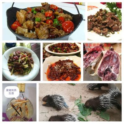 广西壮族自治区崇左市扶绥县豪猪肉 生肉
