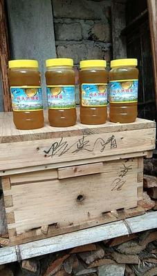 湖北省咸宁市通山县土蜂蜜 塑料瓶装 98% 2年