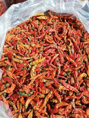 这是一张关于朝天椒干辣椒的产品图片
