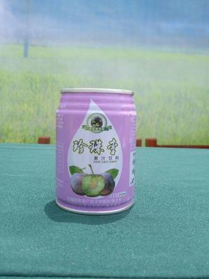 广西壮族自治区河池市天峨县珍珠李果汁饮料 易拉罐 6-12个月