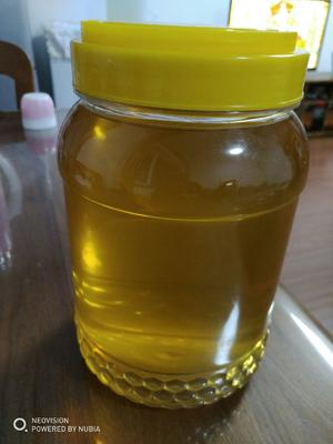 黑龙江省伊春市汤旺河区椴树蜜 塑料瓶装 100% 2年以上
