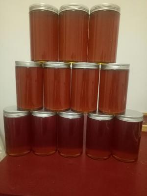 湖北省宜昌市五峰土家族自治县土蜂蜜 塑料瓶装 98% 1年