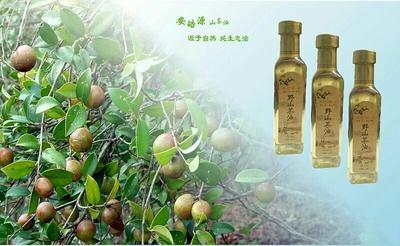 福建省厦门市同安区野生山茶油
