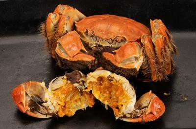这是一张关于兴化大闸蟹 2.0-2.5两 母蟹的产品图片