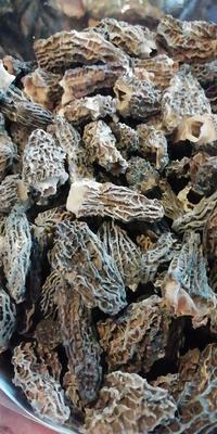 这是一张关于羊肚菌 人工种植 尖顶 灰黑色 3cm~6cm 干货的产品图片