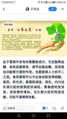 这是一张关于人工种植葛根 1.5-2.0斤的产品图片