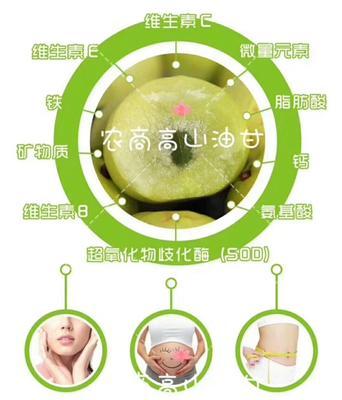 广东省揭阳市普宁市甜种 2cm以下