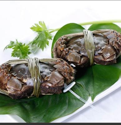 安徽省滁州市天长市高邮湖大闸蟹 2.0-2.5两 母蟹