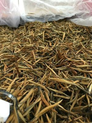 云南省大理白族自治州宾川县邦东古树茶 盒装 特级