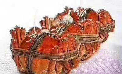 这是一张关于固城湖河蟹 2.0-2.5两 公蟹的产品图片