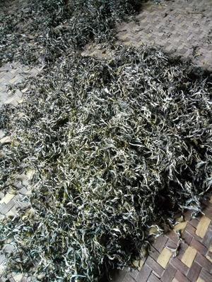 云南省普洱市景谷傣族彝族自治县普洱生态茶 散装 一级