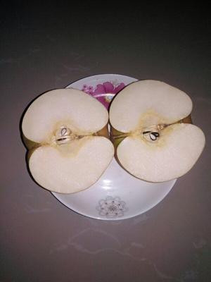 这是一张关于晚秋黄梨 300-350g 80mm以上的产品图片