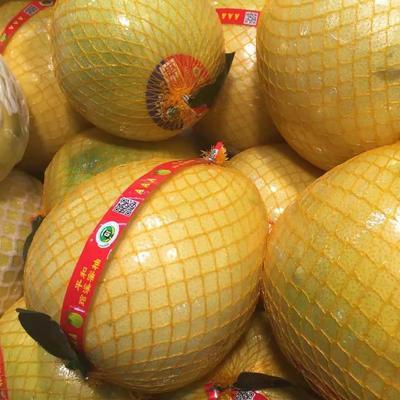 蜜柚 2斤以上