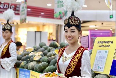新疆维吾尔自治区乌鲁木齐市沙依巴克区板栗南瓜 6~10斤 扁圆形