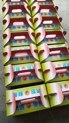 广东省惠州市博罗县甜杨桃 4 - 5两
