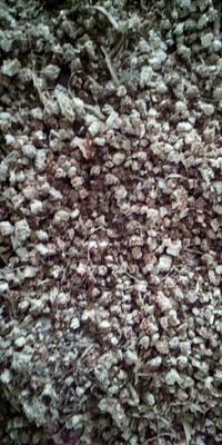 河南省周口市商水县玉米芯颗粒