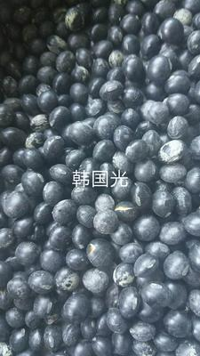 内蒙古自治区呼伦贝尔市鄂伦春自治旗青仁黑豆
