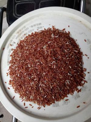 贵州省黔南布依族苗族自治州荔波县红糙米