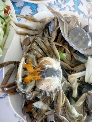 辽宁省盘锦市大洼县盘锦河蟹 0.3两 母蟹