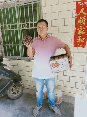 广东省韶关市始兴县粉红 300-600g