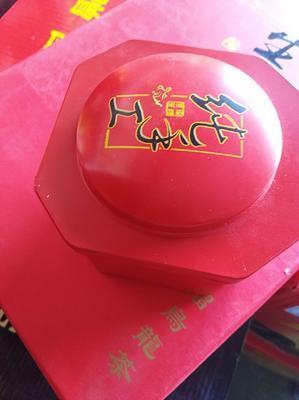 安徽省蚌埠市怀远县乌龙石榴茶叶 礼盒装 一级