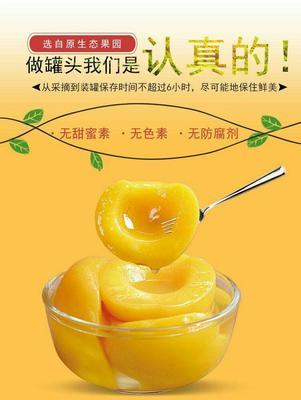 江苏省常州市武进区黄桃罐头 6-12个月