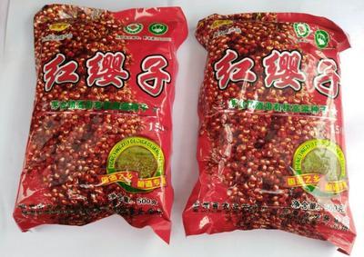 贵州省遵义市遵义县红樱子高粱种子 种子