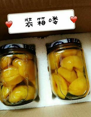 山东省临沂市蒙阴县黄桃罐头 6-12个月