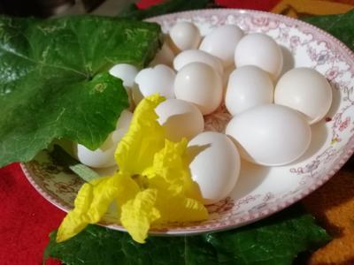 河南省郑州市新密市银羽王鸽子蛋 食用 礼盒装