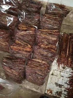 广西壮族自治区钦州市灵山县商品蜈蚣