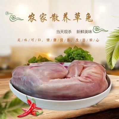山东省菏泽市东明县兔肉类 新鲜