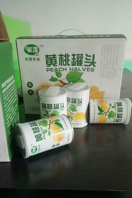 山东省菏泽市巨野县黄桃罐头 18-24个月