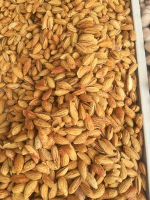 新疆维吾尔自治区喀什地区喀什市巴旦木 半年 带壳