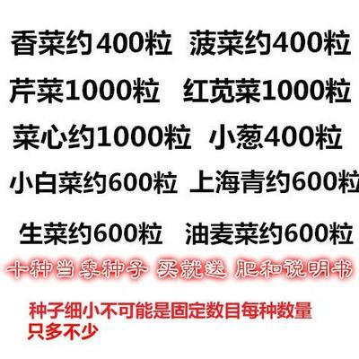 江苏省宿迁市沭阳县香菜种子