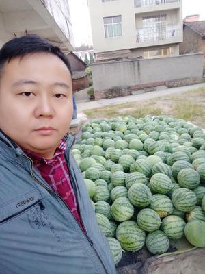 江西省宜春市上高县8424西瓜 有籽 1茬 8成熟 6斤打底