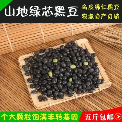 河北省邯郸市邯山区青仁黑豆
