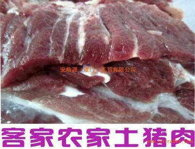 福建省厦门市同安区土猪 160-200斤
