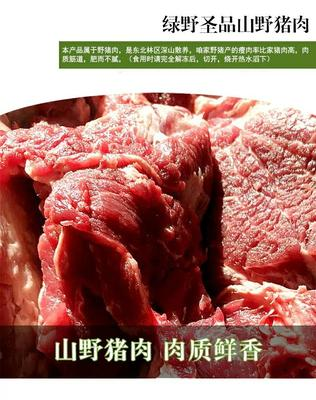 陕西省咸阳市淳化县野猪肉 生肉