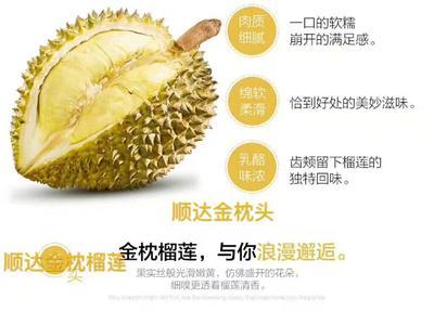 广西壮族自治区崇左市凭祥市泰国金枕榴莲 90%以上 3 - 4公斤