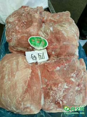 河北省唐山市丰南区猪肉类 生肉