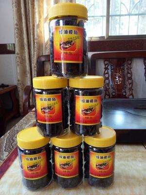 广东省广州市增城区油橄榄