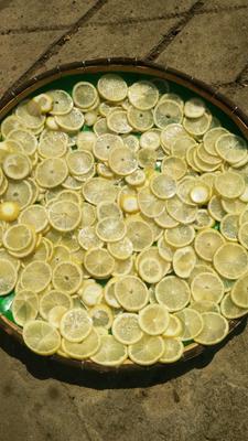 广西壮族自治区南宁市西乡塘区柠檬干片