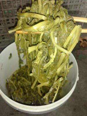 河南省南阳市淅川县酸菜