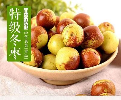 山东省滨州市沾化区沾化冬枣 直口 10-20g