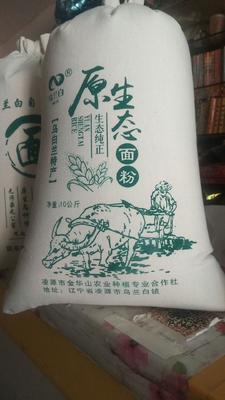 辽宁省朝阳市凌源市蓝小麦面粉