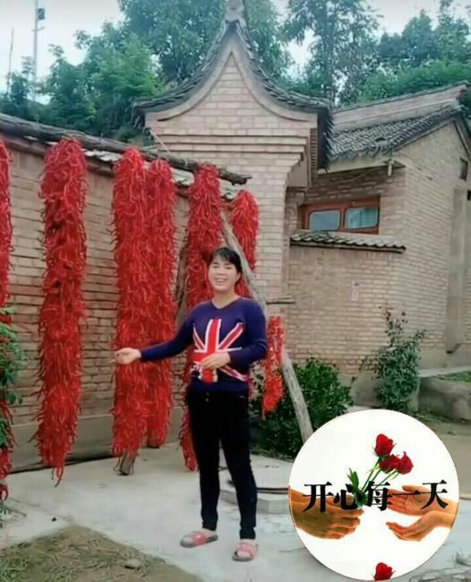 红太阳辣椒 10~15cm 红色 甜辣
