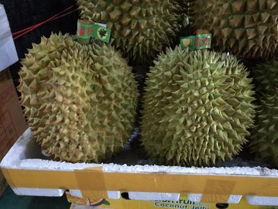 广西壮族自治区崇左市凭祥市越南金枕榴莲 90%以上 3 - 4公斤